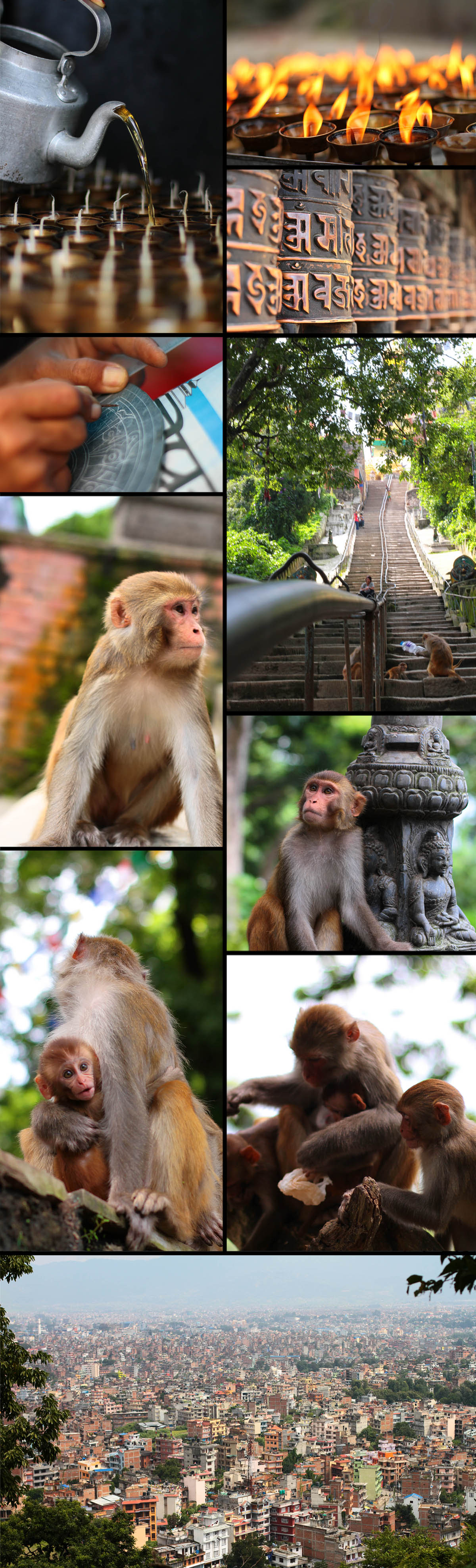 Swayambhunath Temple (Monkey business)